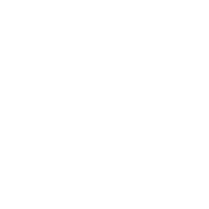 A white logo of WordPress